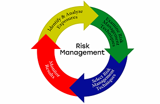 Online risk management course